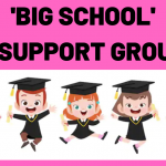 Big School Support Groups
